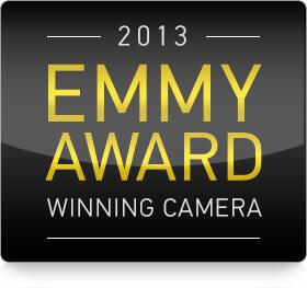 Emmy award 2013